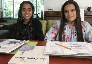 Boekbespreking voorbereiden met het TVF in Groep 6 van de basisschool